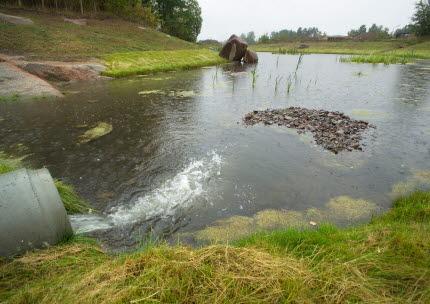 Dagvattendamm i Södra Ekkällan. Foto.
